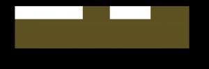 Verdant_logo chocolate png